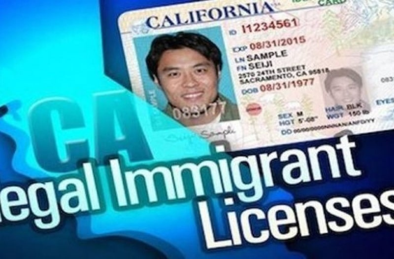 Coordinated State Effort to Push Drivers' Licenses for Illegal Aliens