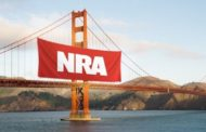 Are NRA Legal Attacks Purely Political?