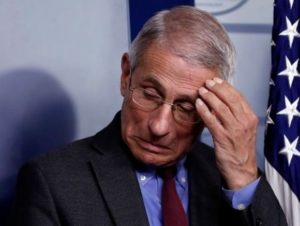 Anthony Fauci feature
